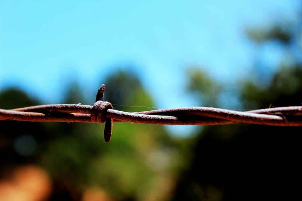 barbwire, metal, barrier
